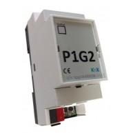 Domoticom P1G2 - P1 Gateway t.b.v. Slimme Meter